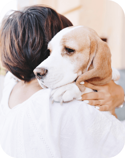 Treatment of separation anxiety in dogs