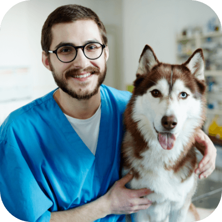 Prevention of age-related anxiety in dogs