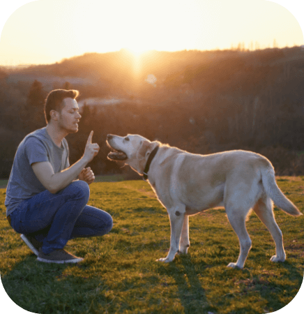 Prevention of fear-based anxiety in dogs